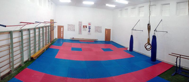 Школа ім. Уляни Кравченко, Гімнастичний спортивний зал школи